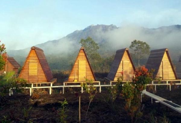 Homestay Murah di Kundasang